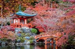 Deals for Hotels in Kyoto
