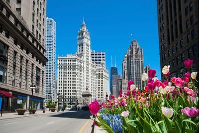 ชิคาโก โรงแรม