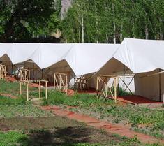 Mystique Meadows Camp