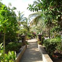 Flamingo Villa's Club Garden
