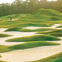 Hilton Head Marriott Resort and Spa Golf course