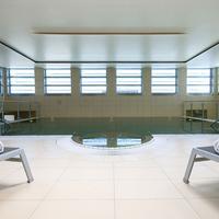 Eurostars Grand Central Indoor Pool