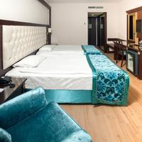 Ege Palas Business Hotel Guestroom