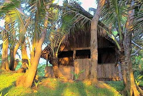 Deals for Hotels in Tanna