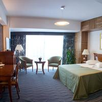Oltenia Hotel Guest room