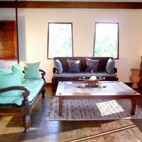 Green Gecko Living Room