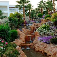 Renaissance Sharm El Sheikh Golden View Beach Resort Other