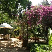 Mediterraneo Hotel Garden