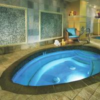 Monte Carlo Resort and Casino Indoor Spa Tub