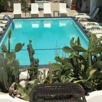 Posh Palm Springs Inn Pool