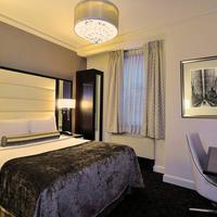 Park South Hotel Guestroom