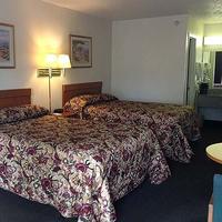 M Star Bradenton Guest room