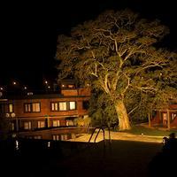 Bandagiri Village Hotel Front - Evening/Night