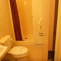 Greenleafe Inn Bathroom