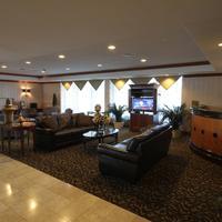 Gateway Hotel Dallas Lobby Sitting Area