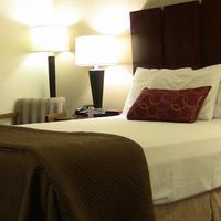 Super 8 Harlingen TX Standard One Queen Bed Room