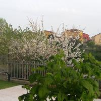Residenza Leon