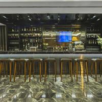 Arts Hotel Istanbul Bosphorus Hotel Bar