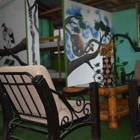 Green House Tambopata Hotel Interior