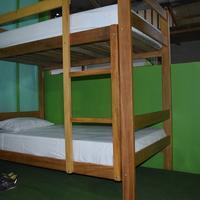 Green House Tambopata Guestroom