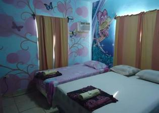 The Guaras Hostal - Hostel