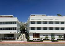 Dream South Beach